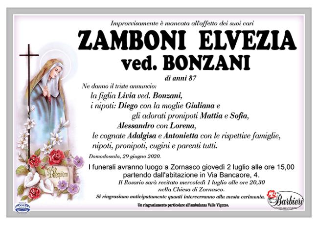 ANN Zamboni ElveziaBonzani