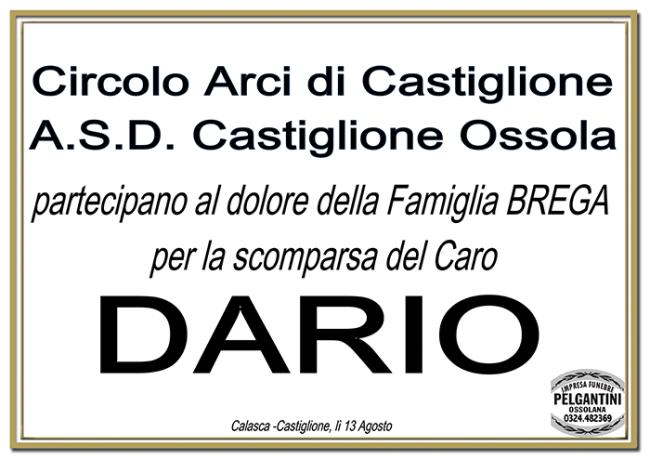 circolo castiglione dario brega