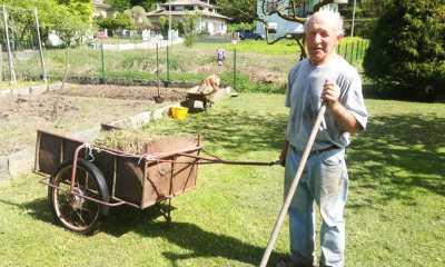 armando orto