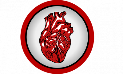 cuore medicina